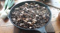 Mushroom and lentil main